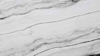 Marble Slabs Calacatta Black